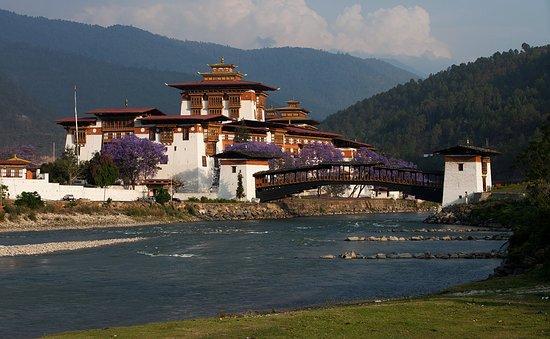 Bhutan Covid News